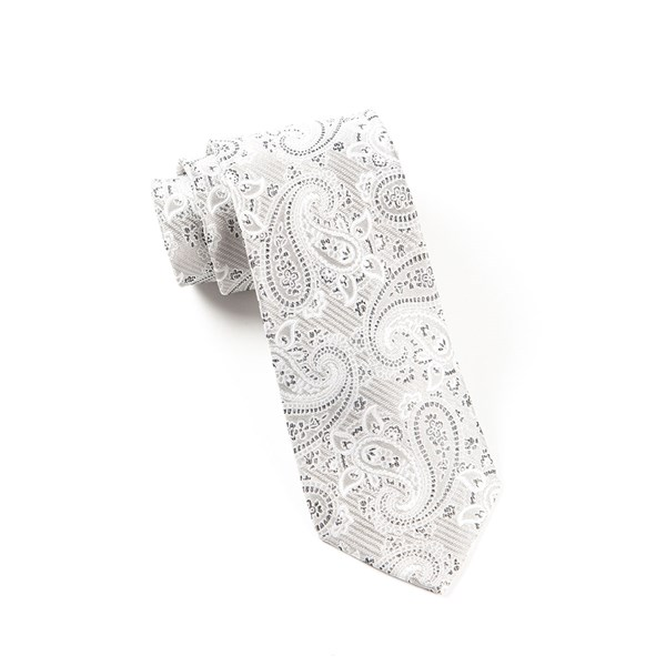 Silver Waltzing Paisley Tie