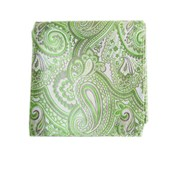 Pocket Squares - CHECK ME OUT PAISLEY - APPLE