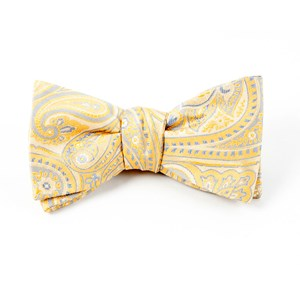 empire paisley butter bow ties