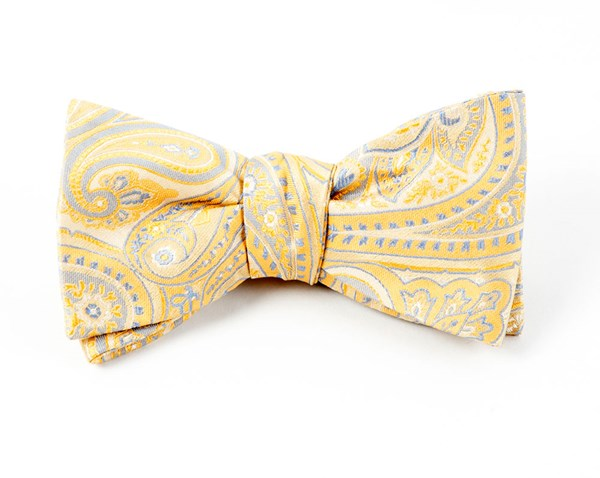 Empire Paisley Butter Bow Tie