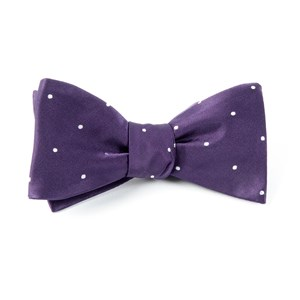 satin dot eggplant bow ties