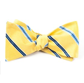 Vocal Stripe Gold Bow Ties