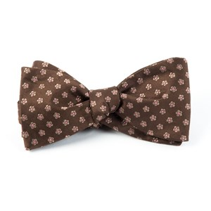 anemones chocolate brown bow ties