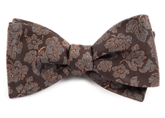 Bow Ties - Intellect Paisley - Dark Brown