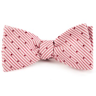 down the aisle dots red bow ties