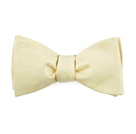 Butter Twill Paisley bow ties