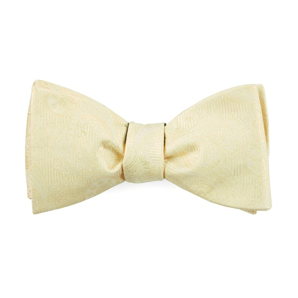 Butter Twill Paisley Bow Tie