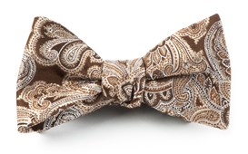 Bow Ties - DESIGNER PAISLEY - CHOCOLATE BROWN