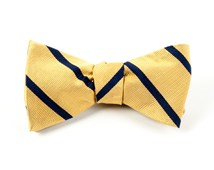 Bow Ties - TRAD STRIPE - GOLD