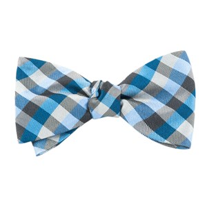 colorful gingham blues bow ties