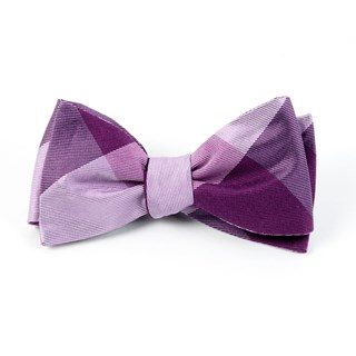 bison plaid azalea bow ties
