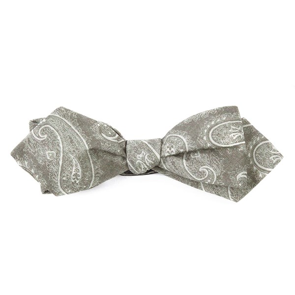 Olive Planetary Paisley (Fs) Bow Tie