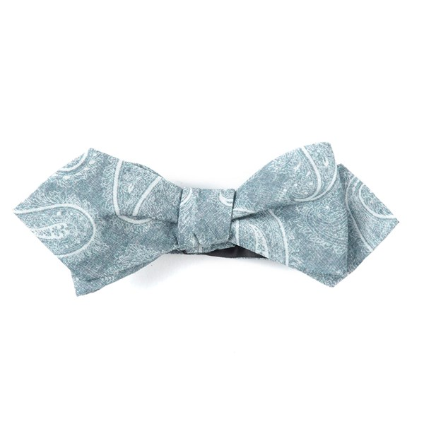 Silver Planetary Paisley Bow Tie