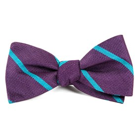 Spring Break Stripe Deep Plum Bow Ties