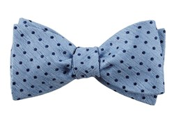 Image result for bow tie