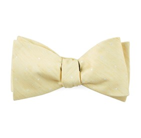 Butter Bulletin Dot bow ties