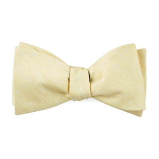 bulletin dot butter bow ties