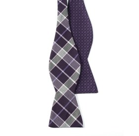 Purple Speckled Catalyst bow ties