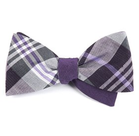 Crystal Wave Row Purple Bow Ties