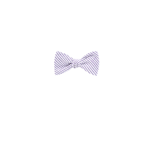 55599b45e38f Soft Lavender Seersucker Bow Tie | Men's Bow Ties | The Tie Bar