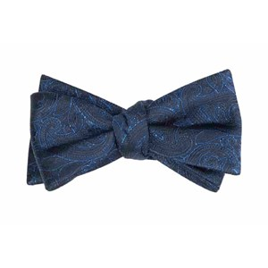 paisley fortune navy bow ties
