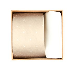 Light Champagne Bulletin Dot Tie Box ties