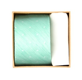 Spearmint Bulletin Dot Tie Box ties