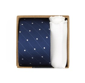 Classic Blue Ringside Dots Tie Box ties
