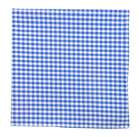 Serene Blue Novel Gingham Pocket Square