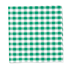 Similar Item - Kelly Green Classic Gingham Pocket Square