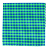 Pocket Squares - GINGHAM SHADE - Apple Green