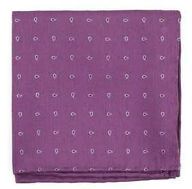Wisteria Budding Paisley pocket square
