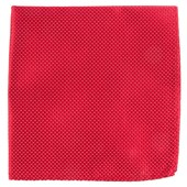 Pocket Squares - Pinpoint - Red