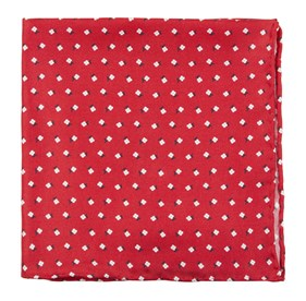 Wonder Floral Apple Red pocket square