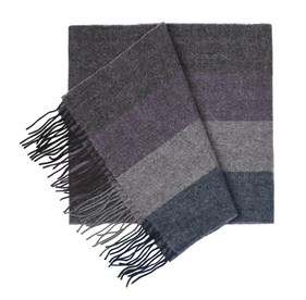 Plum North Center Stripes scarf