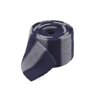 polar stripe navy ties