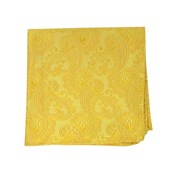 Pocket Squares - TWILL PAISLEY - GOLDS